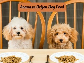 Acana-Vs-Orijen-Dog-Food-1