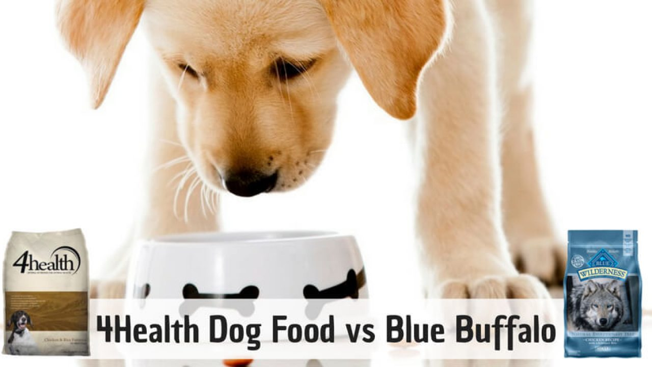 4health Puppy Food >> 4health Vs Blue Buffalo Dog Food Reviews Comparison