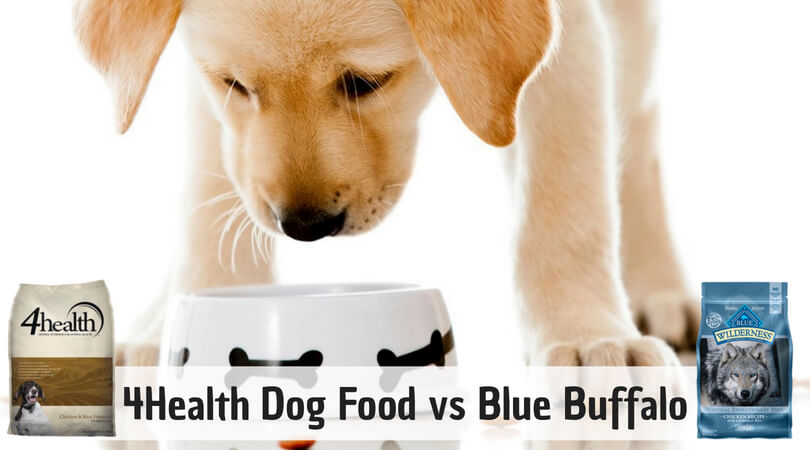 Photo of 4health vs Blue Buffalo Dog Food | Reviews & Comparison